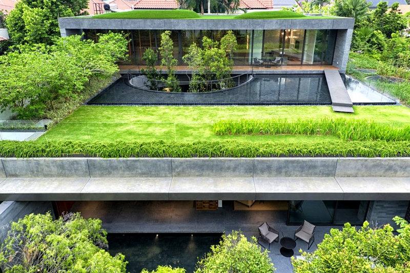 groen plat dak