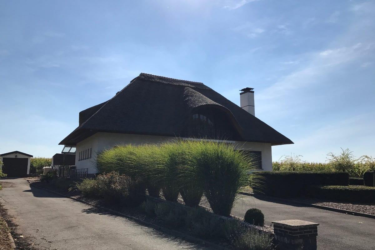 rieten daken prijzen